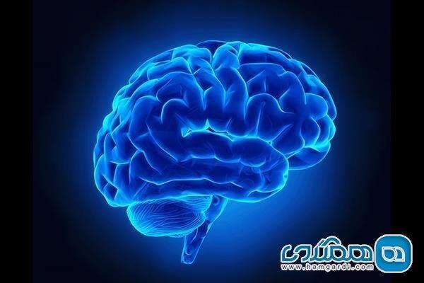 نقش حبابها در آسیب مغزی چیست؟
