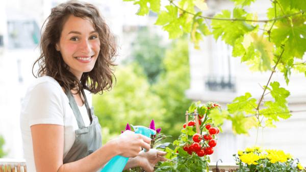 باغبانی در آپارتمان ، ایده هایی ناب برای تمام خانه ها و فصل ها